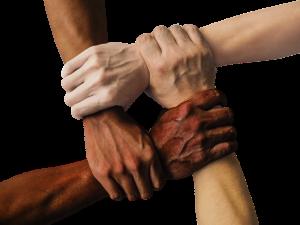 diversity-is-important