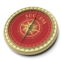 Navigating Success