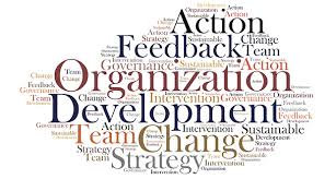 The DiSC Profile and Organizational Development