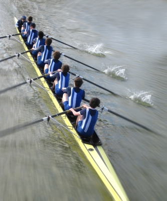 Rowing Shows Teamwork