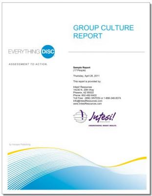 Everything DiSC® Group Culture Report (Online)