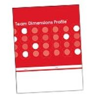 Team Dimensions Profile (Paper)